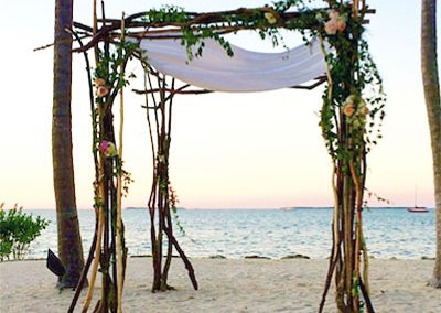 Natural Branch Driftwood Chuppah