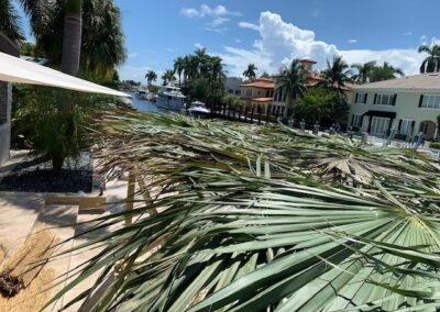 Sukkah Rental - Roof with palm thatching