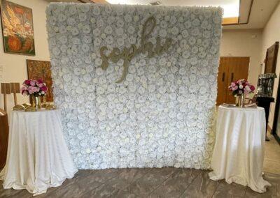 elope-eloping-elopement florida backdrop